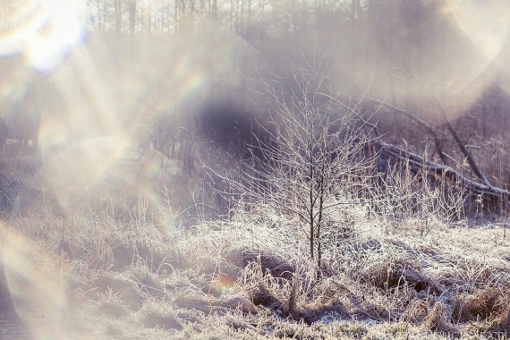 Zima w Poznaniu